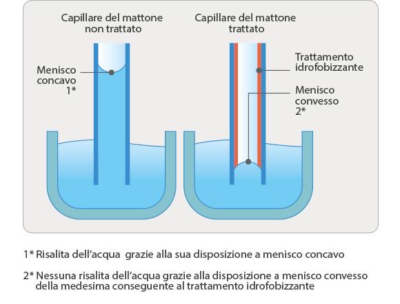 schema capillari_1